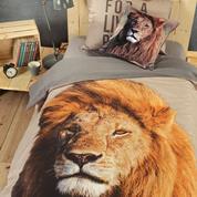 Παπλωματοθήκη μονή Λιοντάρι